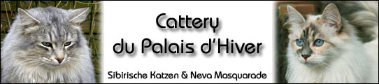 Banner Palaisdhiver